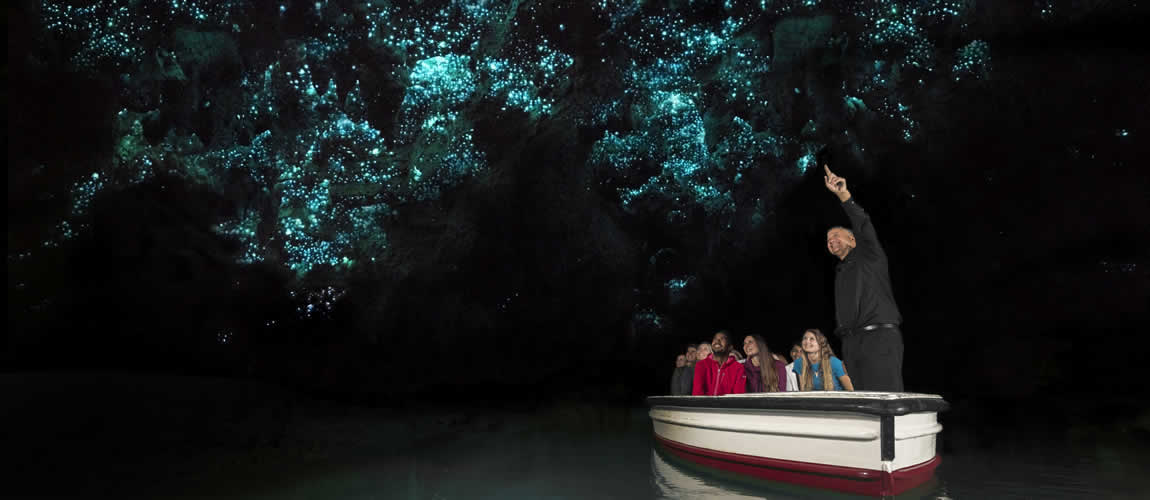 Glowworms in Waitomo Caves