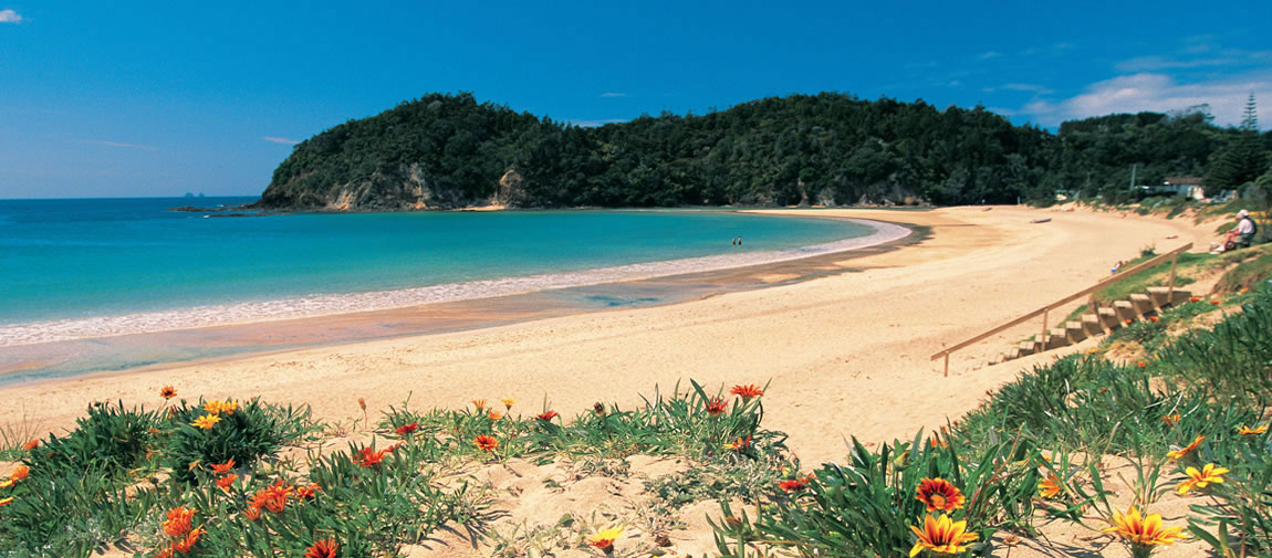 Picturesque coast at the Bay of Islands