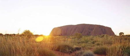a close up of a dry grass field with Uluru in the background