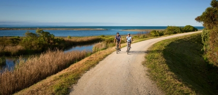 a person riding a bike down a dirt road near a body of water