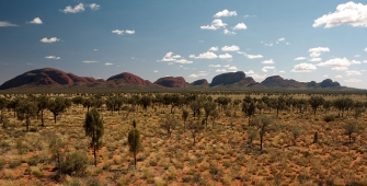 a field with Kata Tjuta in the background