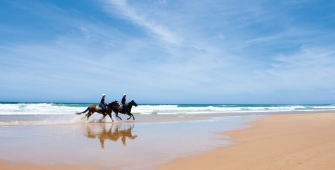 a person riding a horse on a beach