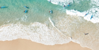 a group of people surfing in the ocean