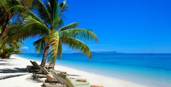 a boat sitting on top of a sandy beach next to a palm tree