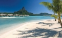 a group of palm trees on a beach near a body of water with Bora Bora in the background