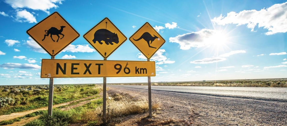 a sign on a dirt road with Nullarbor Plain in the background