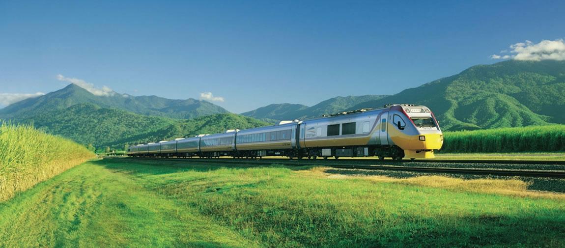 a train traveling through a lush green field