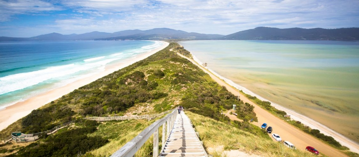 a close up of a hillside next to a body of water with Bruny Island in the background