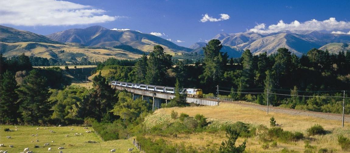 a train on a lush green hillside