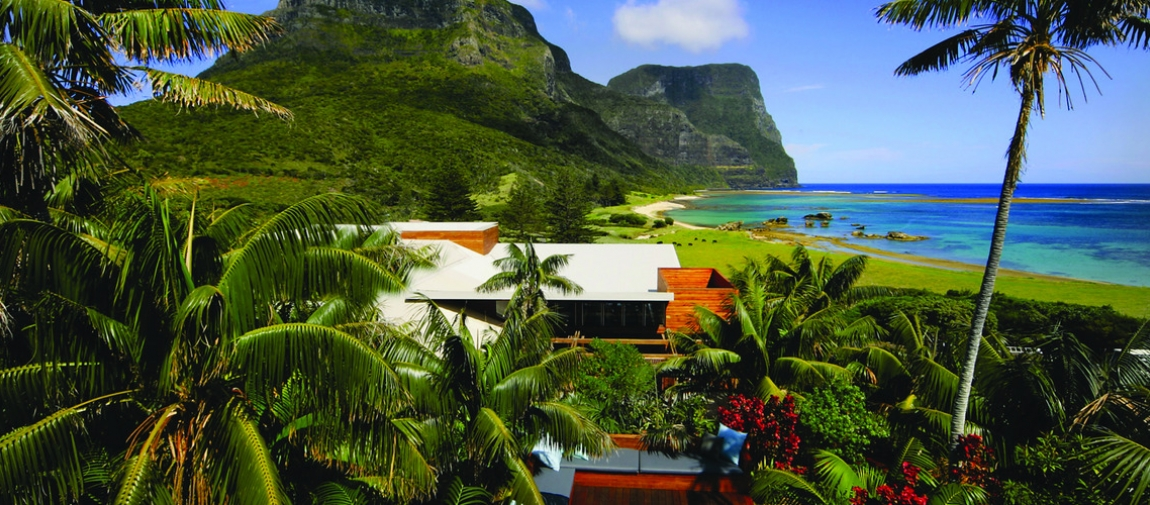 a group of palm trees next to a body of water with Lord Howe Island in the background