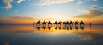 a group of people riding horses on a beach