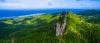a close up of a lush green hillside
